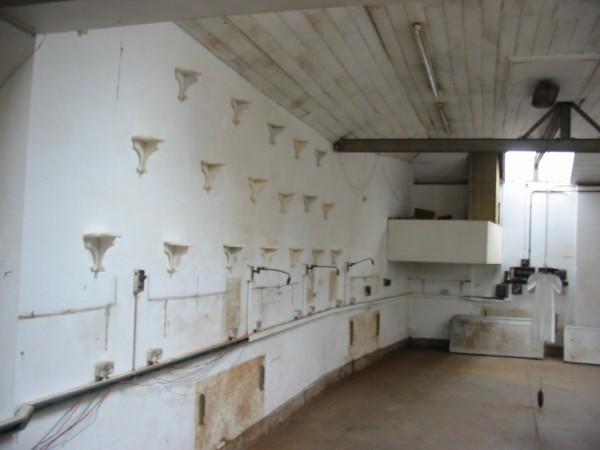 8- Tesselating shelves 2005